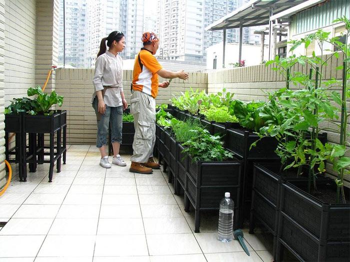 施工家庭农场成都尚鼎丰价格优惠