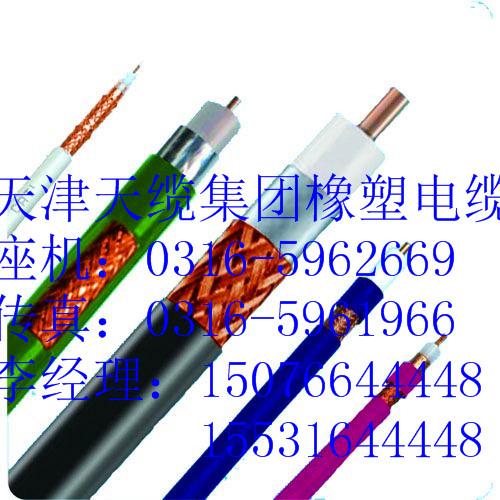NH-KVVP2-22KVVP22耐火屏蔽控制电缆