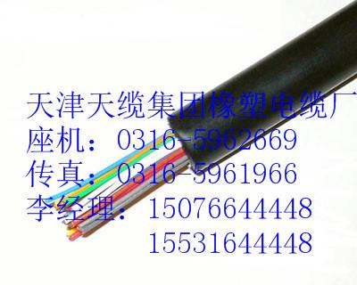 屏蔽控制电缆KVVP2-22KVVP22电缆单价2*0.5