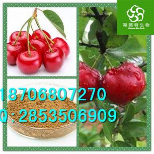 针叶樱桃提取物价格、优质针叶樱桃粉直销