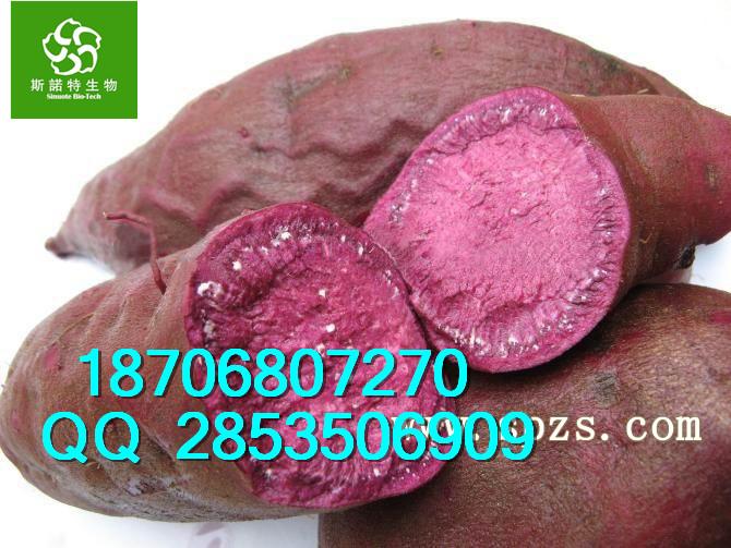 紫薯提取物价格、优质紫薯粉直销