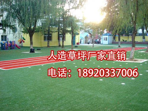 景观塑料假草坪【涵天】幼儿园人造草坪厂家案例图片