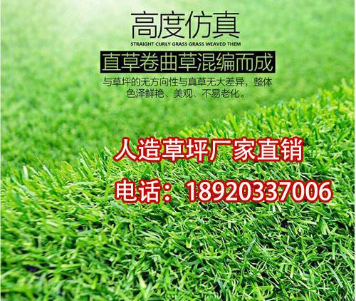 楼顶绿化塑料仿真草皮【涵天】围挡装饰仿真草坪批发价格