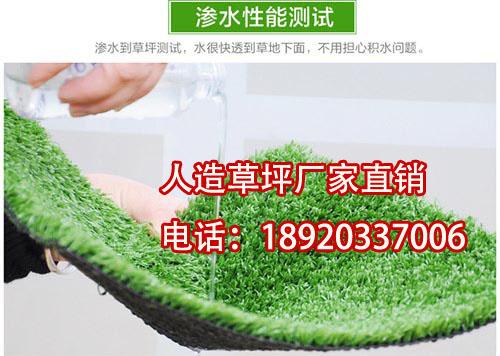 景观塑料假草坪【涵天】楼顶绿化人造草坪