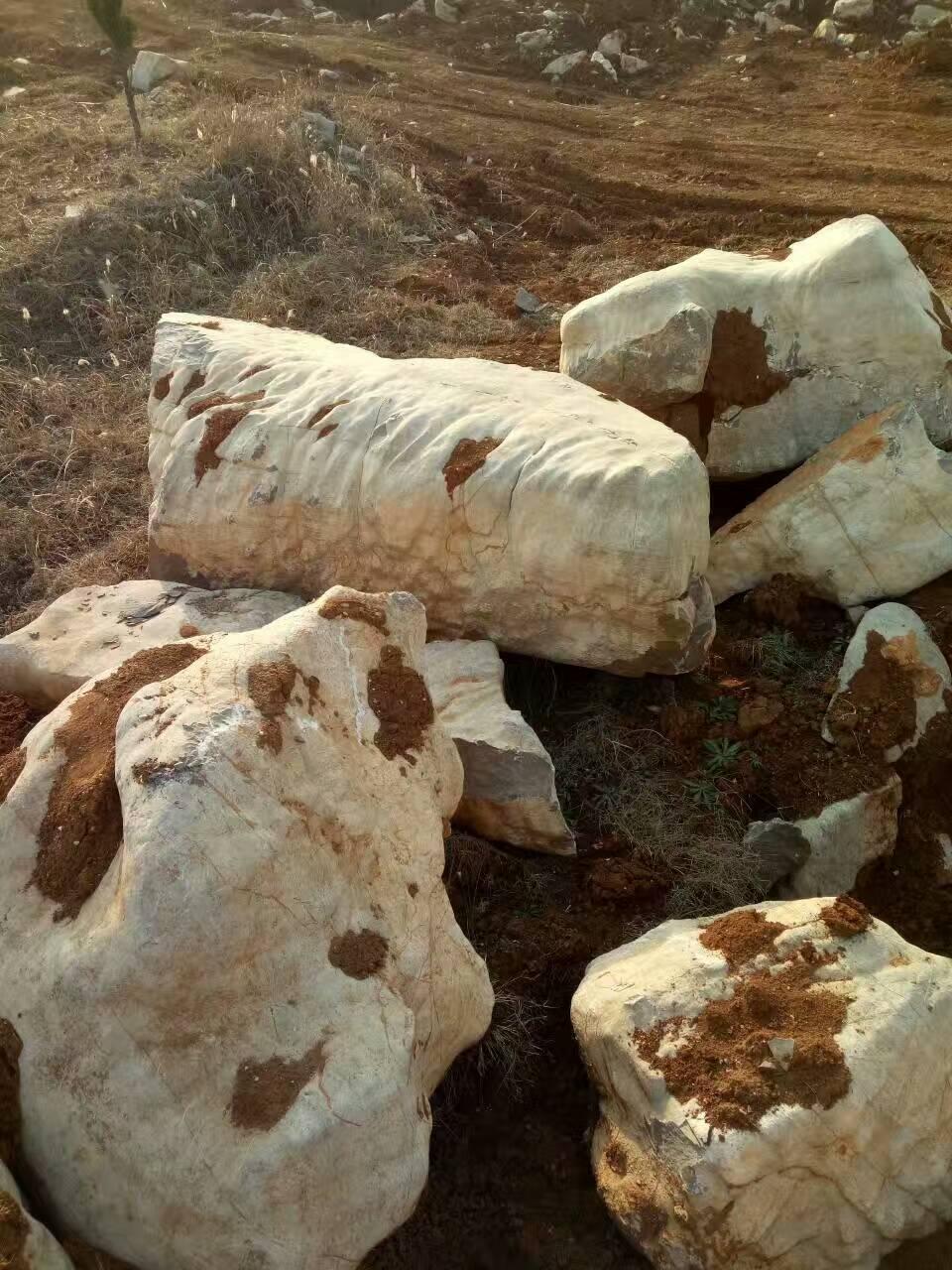 武清区龟纹石驳岸石绿化带点缀