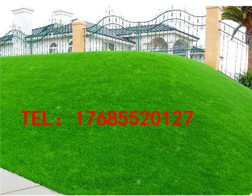 专业足球场人工草坪销售阳春