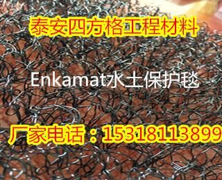 德庆县土工膜同行-省优产品泰安四方格