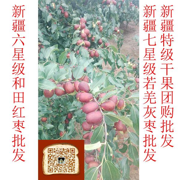 东莞市西域良品和田骏枣 原产地无公害健康食品 营养丰富