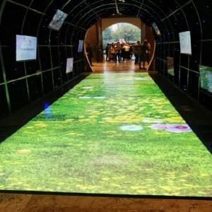 温州互动投影 地面墙面互动投影桌面供应商