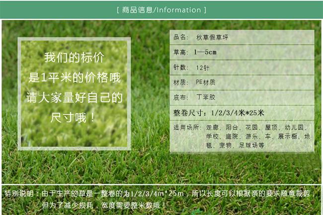 哪家比较好晋江市知名休闲人造草坪