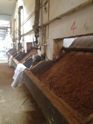 哈尔滨污水处理工业用葡萄糖葡萄糖粉