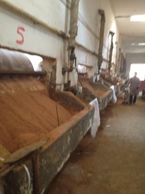 黑河污水处理工业用葡萄糖葡萄糖粉