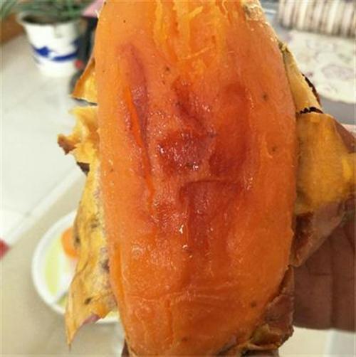 哪里有批发红薯的找昌乐县金城合作社