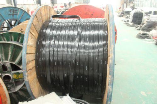 优质起重机用电缆厂家 环球电缆安全耐用