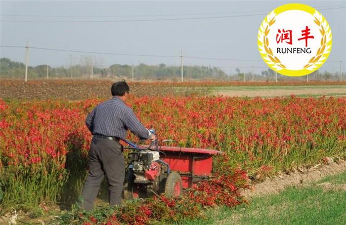 新乡稻麦自动打捆割晒机新乡高效率割晒机收获厂家