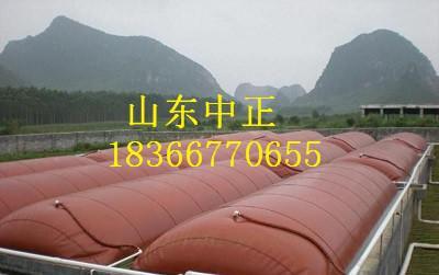沼气发酵袋厂家安装图片