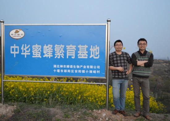 神农蜂语2017年中华蜜蜂养殖培训昨日在官山镇开展
