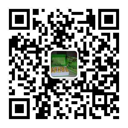 怎样养殖骑乘马养殖技术骑乘马养殖方法甘肃武威市天祝藏族自治县养殖场