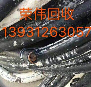 温州母线回收单位
