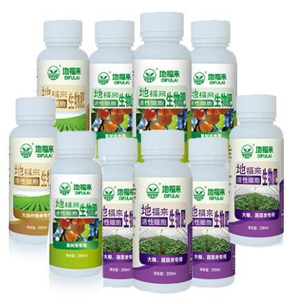 地福来生物肥在西瓜苗上的应用效果对比