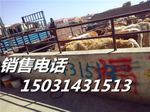 河北省张家口市张北县国营牲畜交易市场