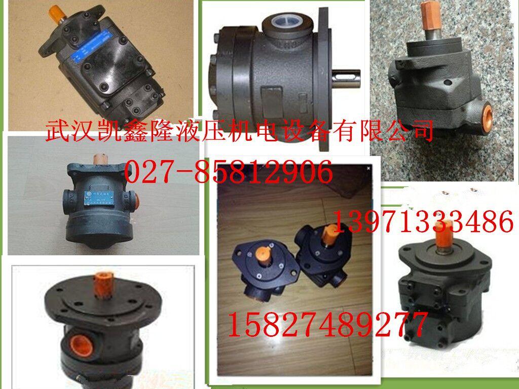 (凯鑫隆)丹尼逊叶片泵T6EDC-052-038-010-1R00-C100供应地区巴彦淖尔