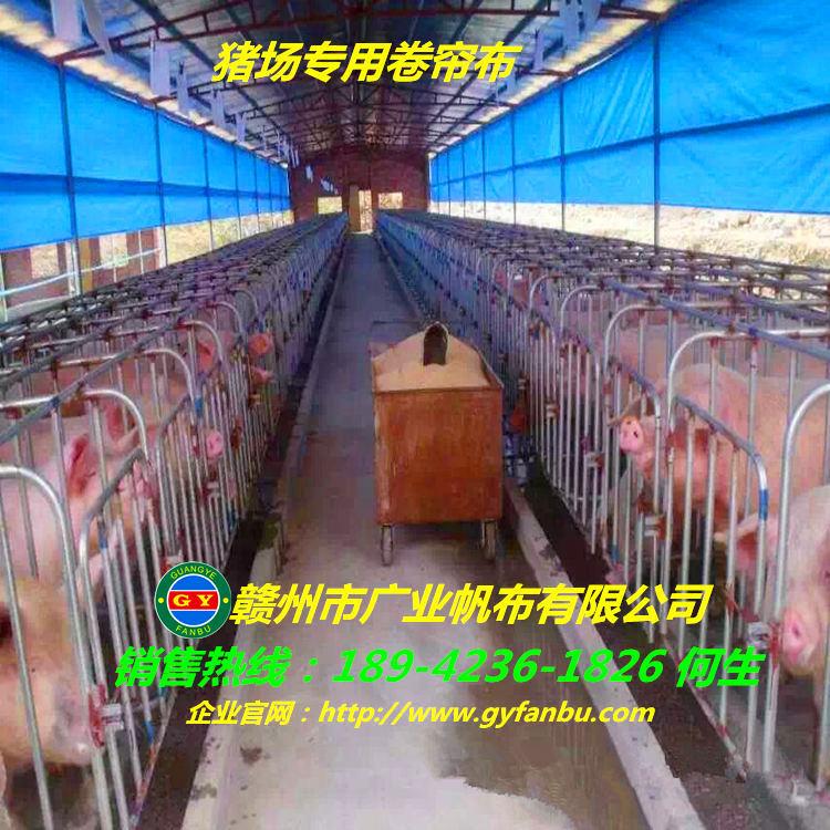 猪场专用卷帘布 猪栏卷帘布价格 猪舍卷帘布安装说明