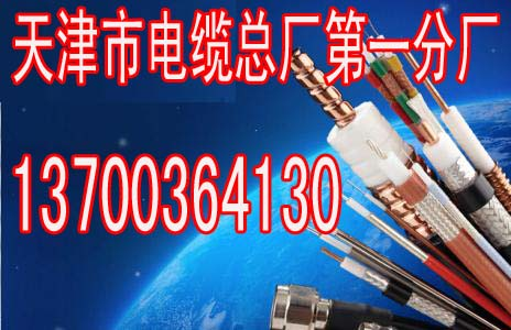 韶关煤矿铠装视频电缆MSYV32生产、75-5