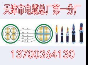 大庆SYV32钢丝铠装同轴电缆什么电缆50-9
