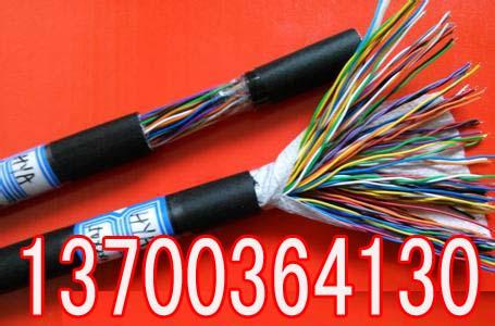 北京CPEVS音频电缆制造厂100x2x0.4