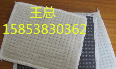苏州养护土工布供应商王总15853830362