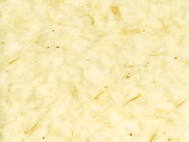 图腾生态墙衣 墙衣是什么 墙衣是什么材料