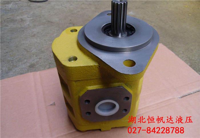 CBY4170-B2FL液压齿轮泵齿轮马达型号