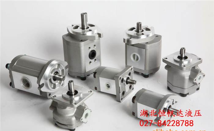 IGM-2F-6.5-R齿轮马达性能卓越
