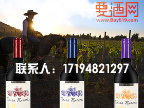 红酒批发厂商代理 适中的红酒批发市场