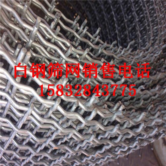 野猪养殖专用白钢丝编织筛网
