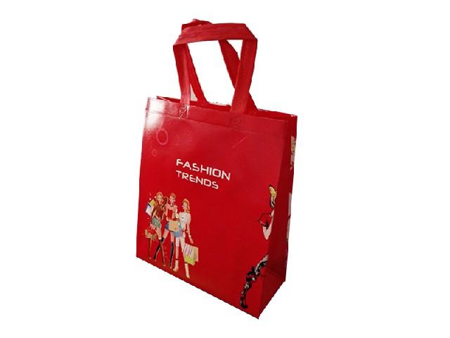 广告环保袋生产厂家温州柔顺的无纺布礼品袋上哪买
