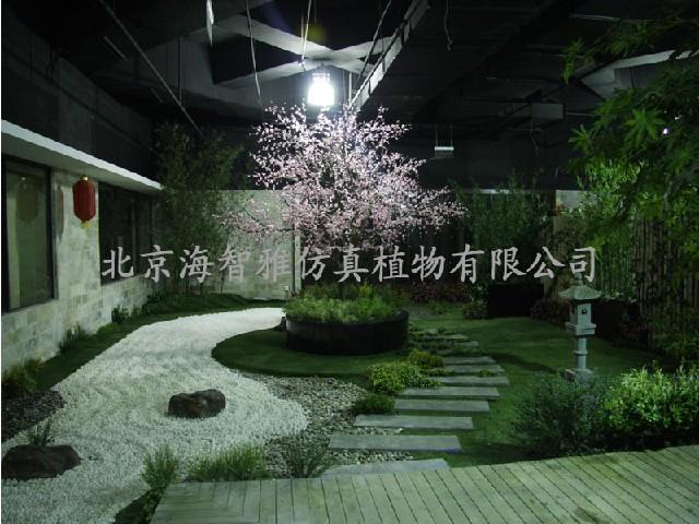 北京物超所值的植物造景供应-植物造景价位