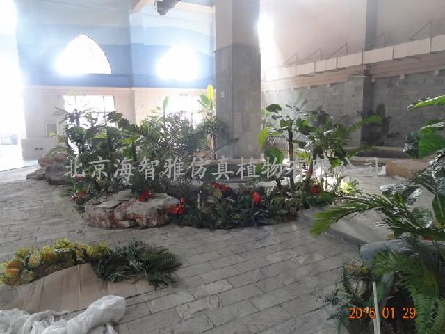 北京可信赖的植物造景提供商、北京植物造景厂家