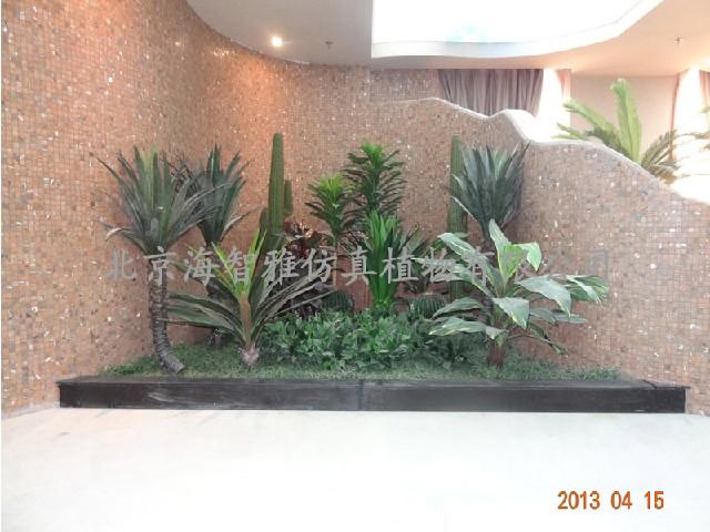 室内植物造景-报价合理的植物造景供应尽在海智雅仿真植物