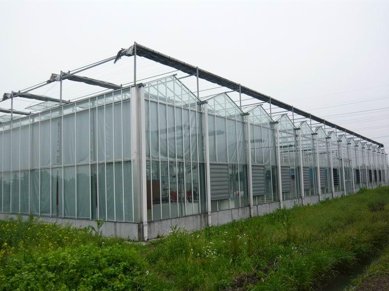 曲靖玻璃丝绵岩棉钢结构用玻璃丝绵钢结构岩棉每吨多少钱