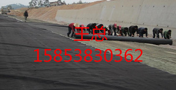 """忻州玻璃纤维土工格栅""""EGA""""工艺精良公司15853830362"""