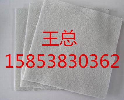 济宁聚丙烯双向拉伸塑料土工格栅TGSG厂家/品质优良公司15853830362