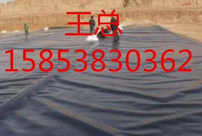 六盘水hdpe防渗膜15853830362信誉可靠总代理