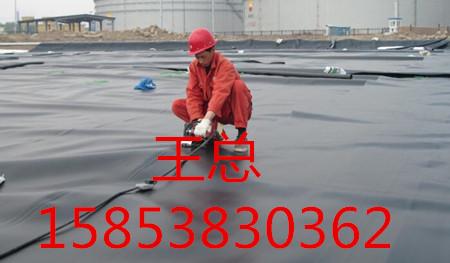 固原聚丙烯双向拉伸塑料土工格栅TGSG厂家/品质优良公司15853830362