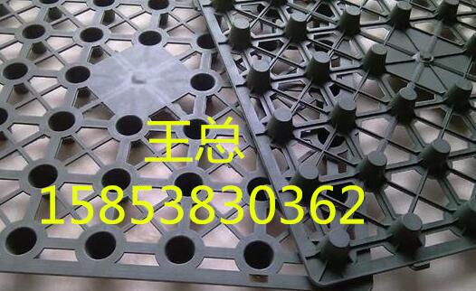 巴彦淖尔钢塑复合土工格栅(GSZ)款式齐全15853830362