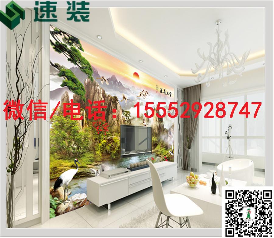辽宁葫芦岛速装3D/5D/6D电视/沙发背景墙