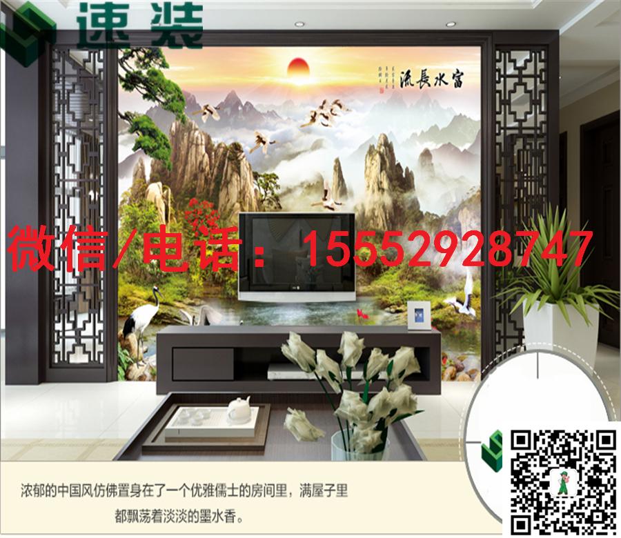 江苏宿迁速装3D/5D/6D电视/沙发背景墙