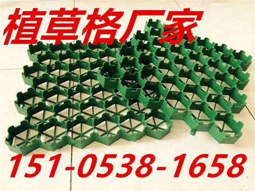 欢迎光临荆州植草格厂家有限公司集团欢迎您