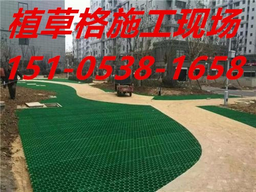 (欢迎光临南昌植草格价格便宜)实业有限公司15105381658欢迎您南昌